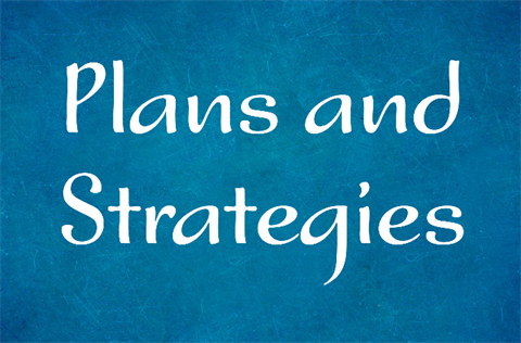 plans and strategies